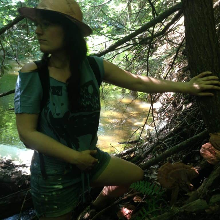 Searching for Reishi... Found!
